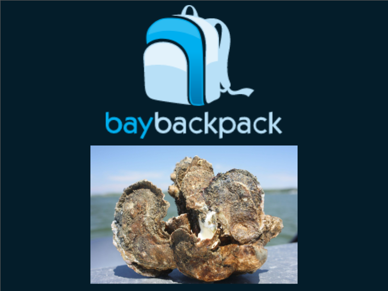 Bay Backpack logo and oysters